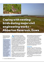 Coping with nesting birds during major civil engineering works