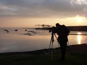 Ecology Surveys Surveyor