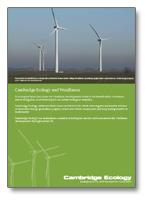 brochure-windfarm-capabilit